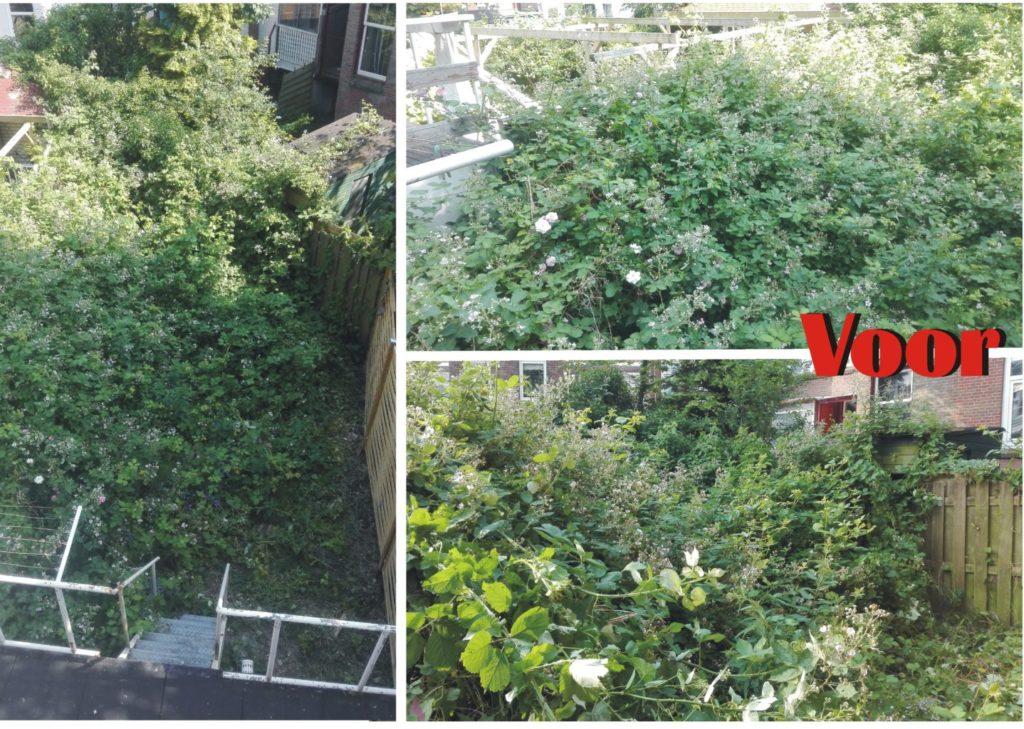 Tuin opknappen renovatie