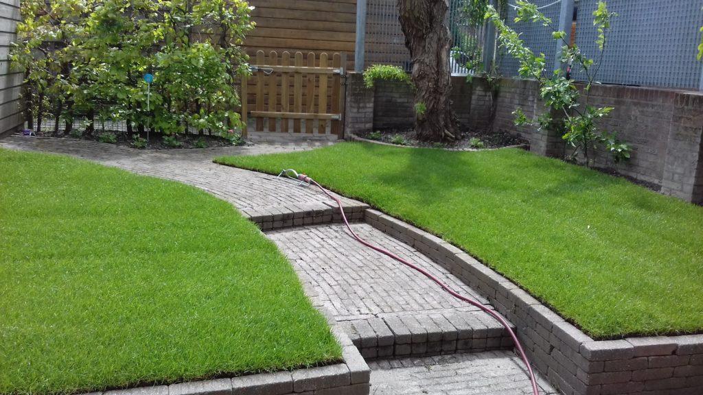 Aanleg gras Schiedam - Huidige tuinprojecten