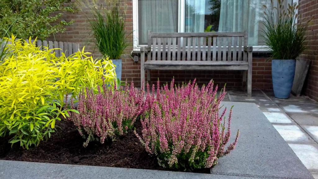 Plantenbak met muurstenen - huidige tuinproject
