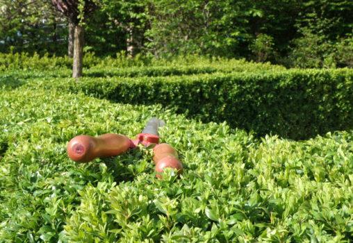 Tuinonderhoud 2 x per jaar