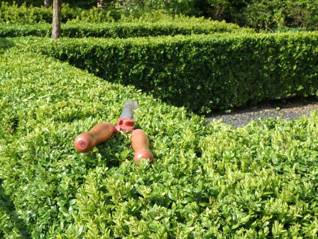 Haag snoeien tuinonderhoud en snoeibeurt