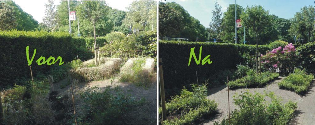 Tuinrenovatie Schiedam
