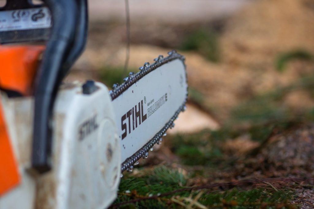 Boom verwijderen of snoeien tuinonderhoud en snoeibeurt
